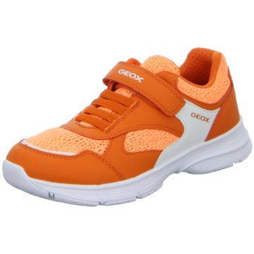 Geox Trainings- und Hallenschuh orange