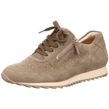 Hassia Sneaker Low -