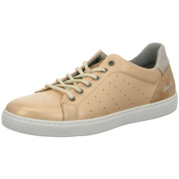 Kid boxer Sneaker Low gold