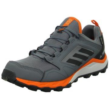 adidas TrailrunningTerrex Agravic TR GTX grau