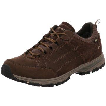 Meindl Outdoor SchuhDURBAN GTX - 3949 braun