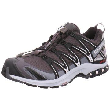 Salomon Outdoor SchuhXA Pro 3D GTX Herren Laufschuhe Trail-Running schwarz grau grau