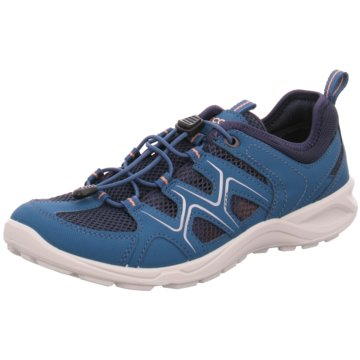 Ecco Outdoor SchuhECCO TERRACRUISE LT blau