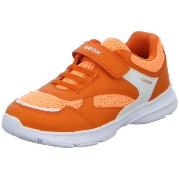 Geox Schnürschuh orange