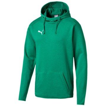 Puma SweaterLIGA Casuals Hoody grün