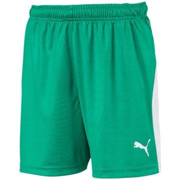 Puma Fußballshorts grün