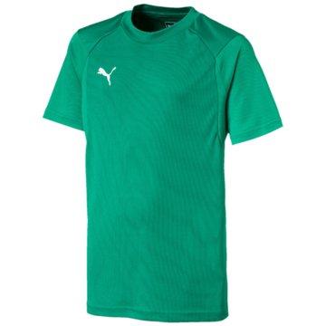 Puma T-Shirts grün