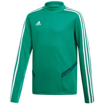 adidas SweatshirtsTIRO19 TR TOPY - DW4800 grün