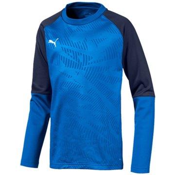 Puma Sweatshirts blau
