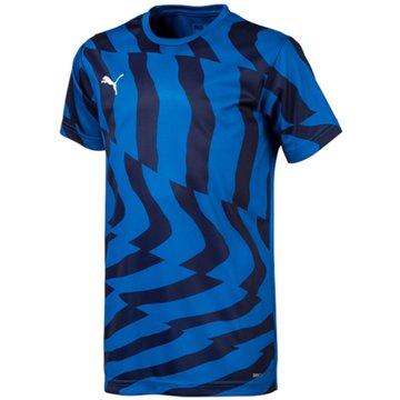 Puma Fan-Trikots blau