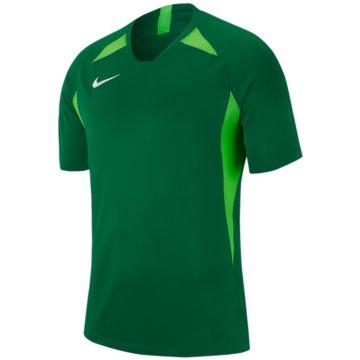 Nike FußballtrikotsNike Dri-FIT Striker V - AJ1010-302 grün