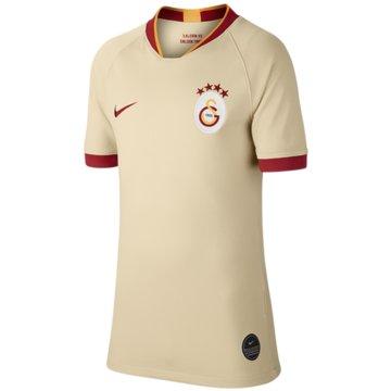 Nike Fan-TrikotsGalatasaray 2020 Stadium Away - AJ5802-248 beige
