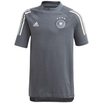 adidas Fan-T-ShirtsGermany Tee - FI0750 grau