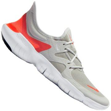 Nike RunningFree RN 5.0 beige