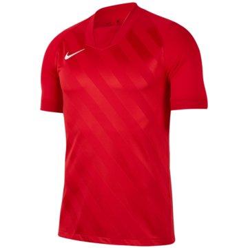 Nike FußballtrikotsNike Dri-FIT Challenge III - BV6738-657 rot