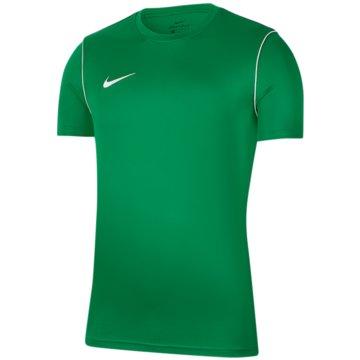 Nike FußballtrikotsDRI-FIT PARK - BV6905-302 grün