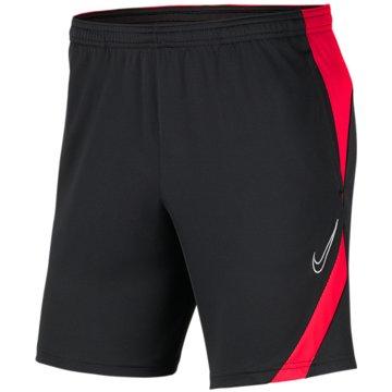 Nike FußballshortsDRI-FIT ACADEMY PRO - BV6924-067 -