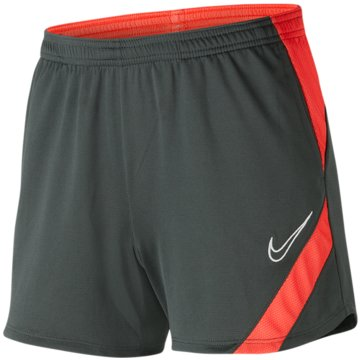 Nike FußballshortsDRI-FIT ACADEMY PRO - BV6938-068 grau