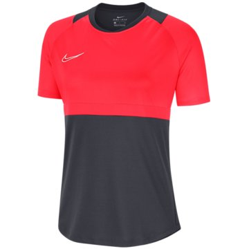 Nike FußballtrikotsDry Academy 20 SS Top Women grau