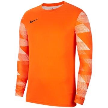 Nike FußballtrikotsNike Dri-FIT Park IV - CJ6066-819 -