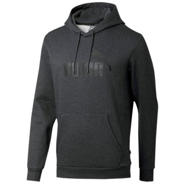 Puma HoodiesEssentials Big Logo Fleece Hoodie -