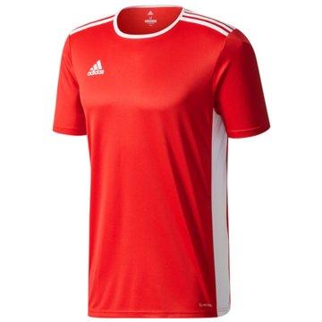 adidas FußballtrikotsENTRADA 18 JSYY - CF1050 -