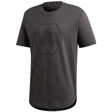 adidas Fan-T-ShirtsTAN LOGO TEE - FM0837 -