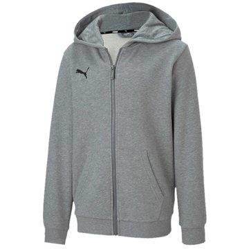 Puma Sweatjacken grau