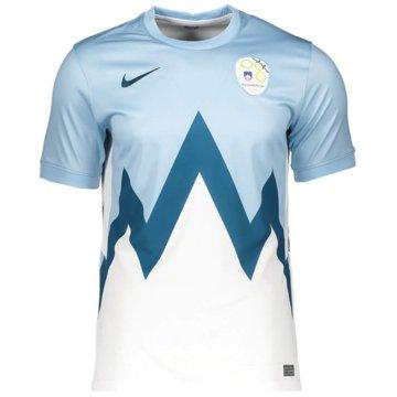 Nike Fan-TrikotsSLOVENIA 2020 STADIUM HOME - CD0733-436 -