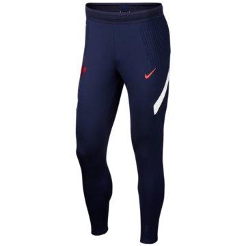 Nike Fan-HosenVAPORKNIT FFF STRIKE - CD2095-498 -