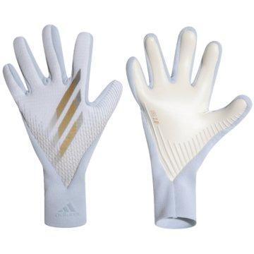adidas TorwarthandschuheX 20 Pro Gloves weiß