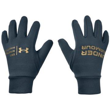 Under Armour FingerhandschuheStorm Graphic Liner Glove -