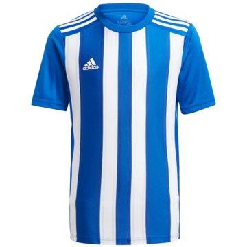 adidas FußballtrikotsSTRIPED 21 TRIKOT - GH7323 blau