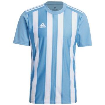 adidas FußballtrikotsSTRIPED 21 TRIKOT - GN5845 schwarz