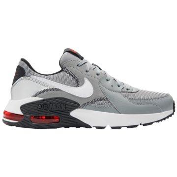Nike Sneaker LowAIR MAX EXCEE - CD4165-009 grau