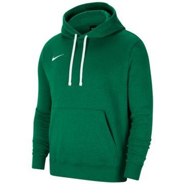 Nike HoodiesPARK - CW6896-302 -