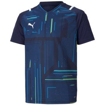 Puma T-ShirtsTEAMULTIMATE JERSEY JR - 705078 blau