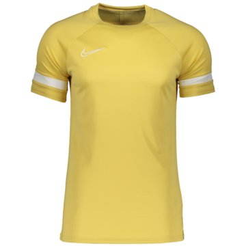 Nike FußballtrikotsDRI-FIT ACADEMY - CW6103-700 -