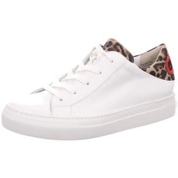Paul Green Sneaker World türkis