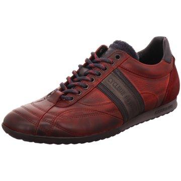 3960fb0ae6d62 Cycleur de Luxe Sale - Schuhe reduziert kaufen