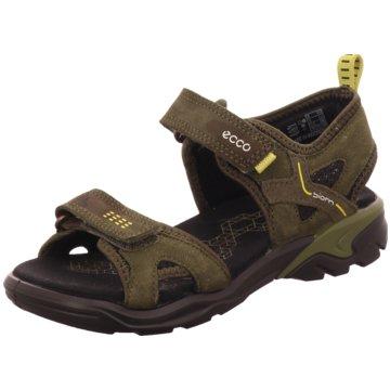Ecco Offene SchuheBiom Raft Sandale braun