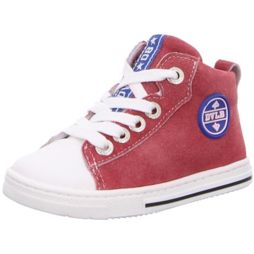 Develab Sneaker High rot