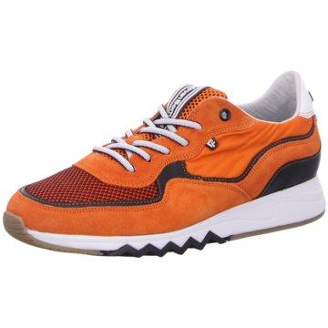 Floris van Bommel Sneaker Low orange