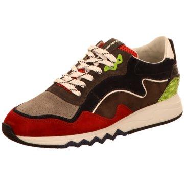 Floris van Bommel SneakerFloris Sport Red Suede rot