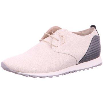Donna Carolina Sneaker Low beige