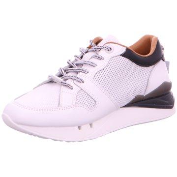 Cetti Plateau Sneaker weiß