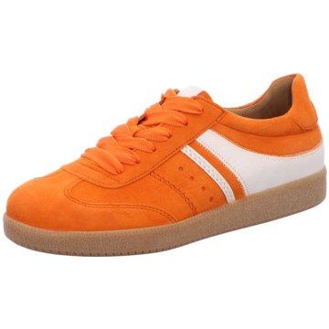 Gabor Sneaker LowSneaker orange