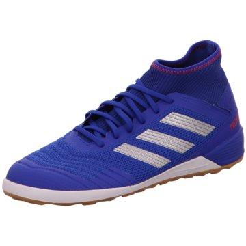 adidas HallenschuhePredator 19.3 IN blau