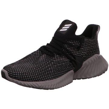 adidas RunningAlphabounce Instinct schwarz