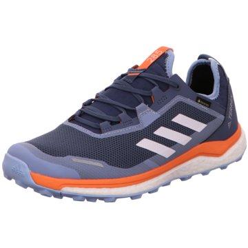 adidas Outdoor SchuhTerrex Agravic Flow Boost GTX Women blau